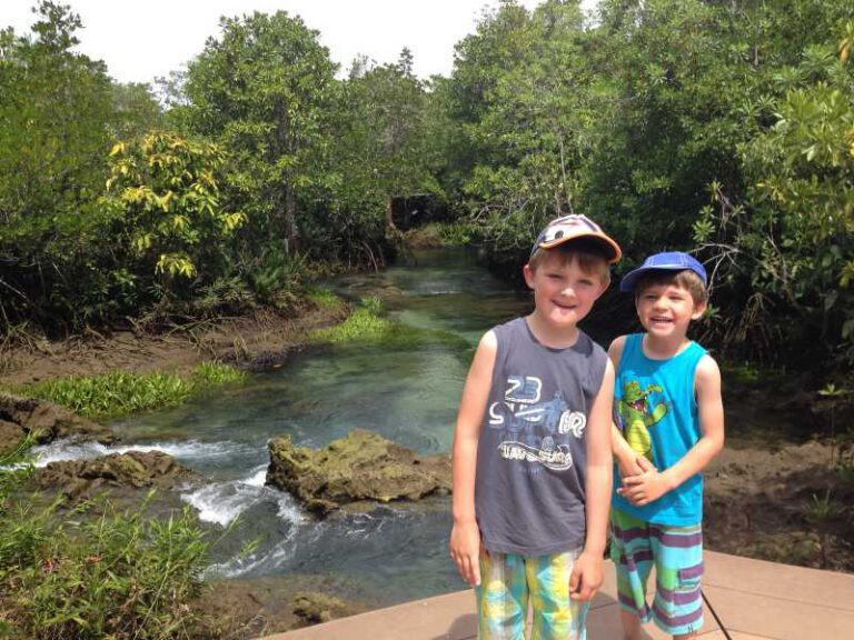 Ausflug in die Mangroven