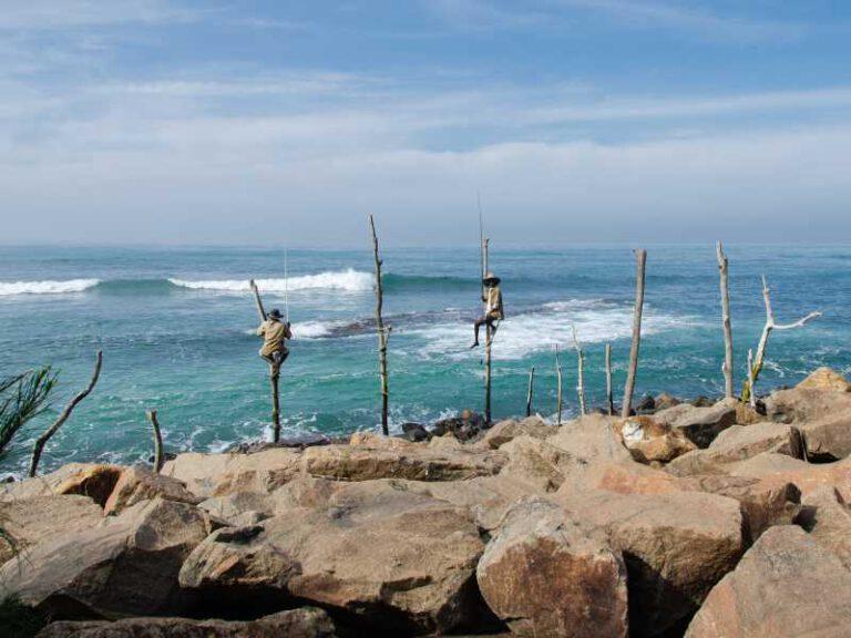 800 - Sri Lanka - stilt-fishing-4043638_1920