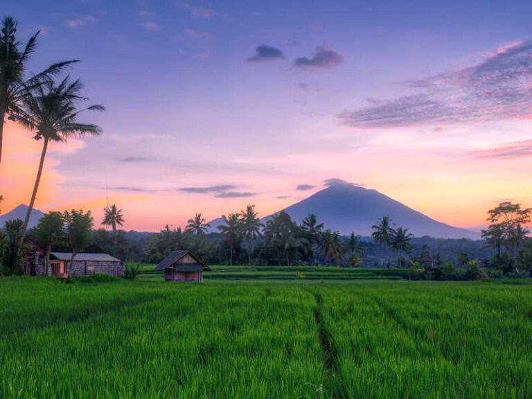 800 - Bali - sunset-at-the-rice-fields-in-bali