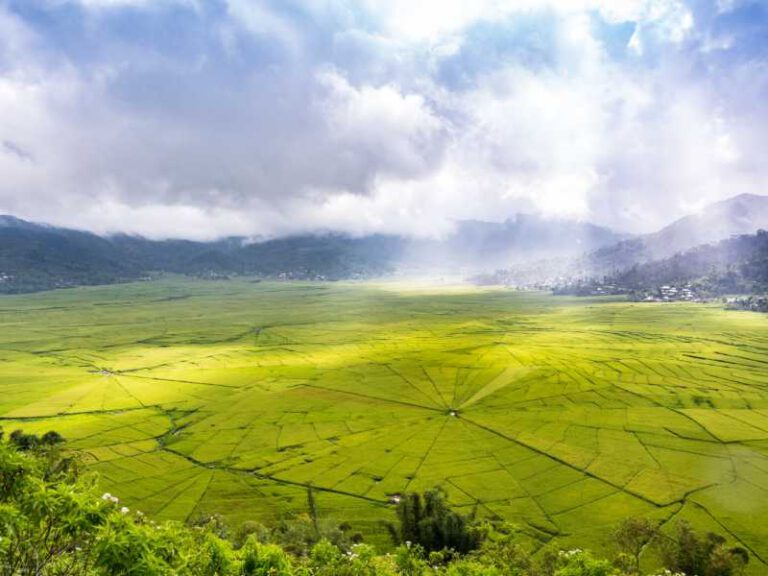 800 - Flores - aerial-view-of-spider-web-rice-fields-while-sunlight-piercing-through-clouds-to-the-field