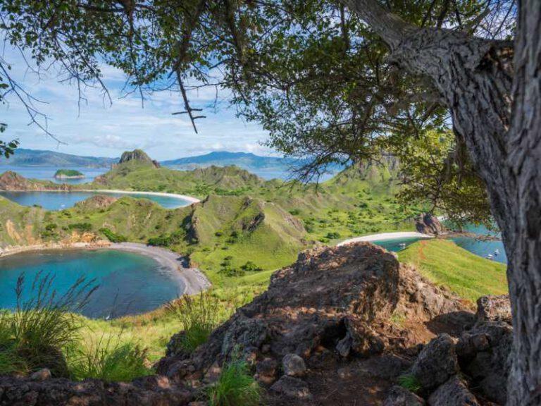 800 - Flores - the-stunning-landscape-of-padar-island
