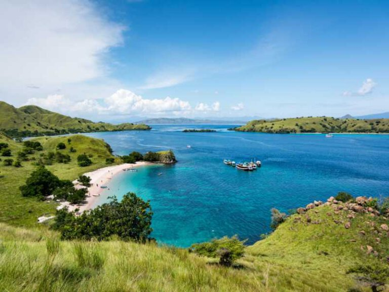 800 - Flores - top-view-of-pink-beach-with-turquoise-clear-water-in-komodo-island
