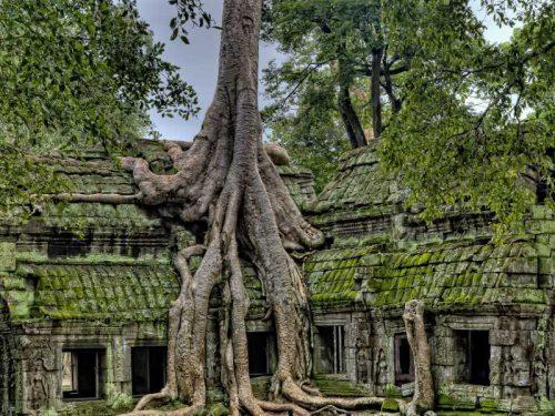 800 - Kambodscha - ancient-3773934_1920