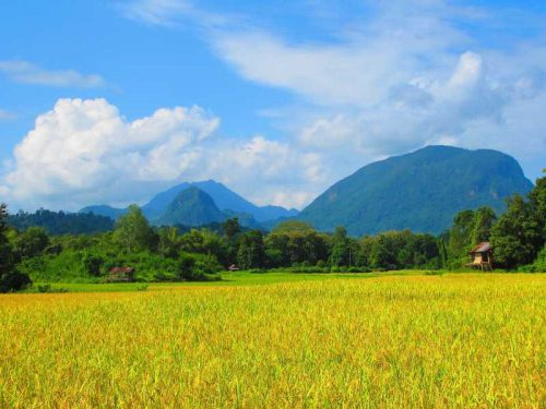 800 - Laos - country-side-2165173_1920