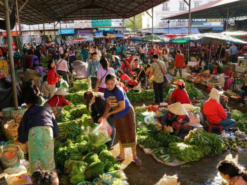 800 - Laos - fruit-3262283_1920