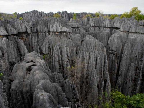 800 - Madagaskar - tsingy-de-bemaraha-typical-landscape-madagascar