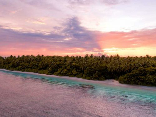 800 - Malediven - aerial-wide-shot-of-a-beach-with-trees-next-to-the-sea-in-maldives-during-sunset