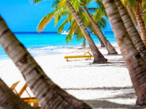 800 - Malediven - vacation-summer-holidays-background-wallpaper-sunny-tropical-exotic-caribbean-paradise-beach