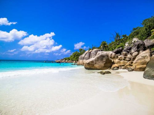 800 - Seychellen - beach-surrounded-by-the-sea-and-greenery-under-the-sunlight-and-a-blue-sky-in-praslin-in-seychelles(1)