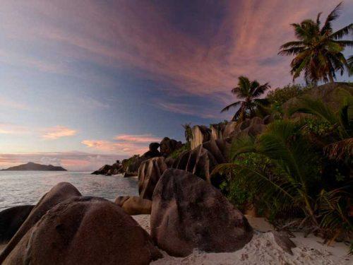 800 - Seychellen - palm-trees-5465312_1280