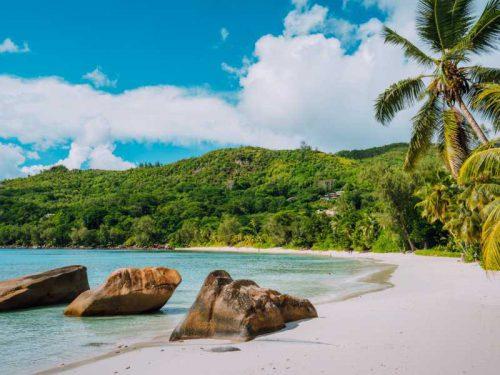 800 - Seychellen - white-sand-beach-coconut-palms-and-blue-lagoon-of-tropical-island-anse-takamaka-beach-seychelles